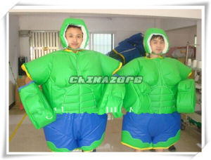 The Hulk Wrestling Sumo Suit Factory Price pictures & photos