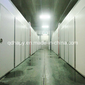 High Quality Steel Structure Hatchery and Hatching Equipment pictures & photos