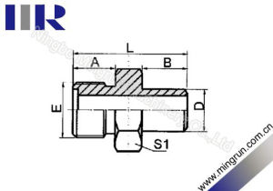 Metric Male O-Ring / Butt-Weld Tube Fitting (1EW)