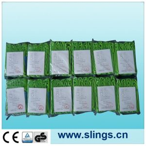 Sln Blue Round Sling (high tensile eye type) pictures & photos
