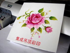 Butterfly-Jet Automatic PVC ID Card Printer UV Flatbed Printer pictures & photos