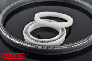 Spring Energized Seal for Fuel and Gas Nozzle pictures & photos