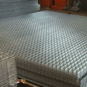 Galvanized Welded Wire Mesh Panel pictures & photos