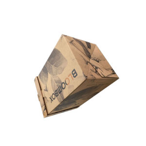 E-Commerce Packaging Shipping Carton Boxes pictures & photos