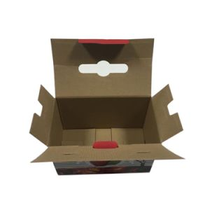 Good Corrugated Box Packaging Carton for Cooker pictures & photos
