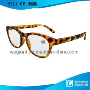 Fashion Vivid Style Fake Designer Transition Tint Reading Glasses pictures & photos