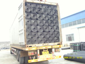 Road Construction PP Biaxial Geogrid 30knx30kn pictures & photos