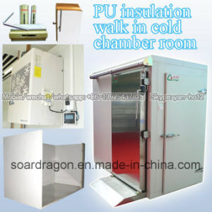PU Insulation Walk in Cold Chamber Room pictures & photos