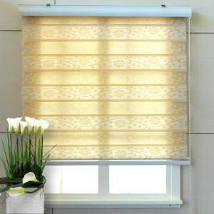Jacquard Weave Fabric Patterned Zebra Shade Combi Blinds pictures & photos