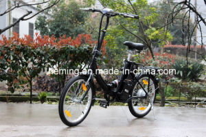 24V 10ah Lithium Battery Ce Certificate Fold Electric Bike pictures & photos