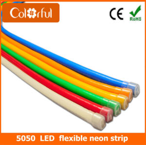 Big Promotion SMD5050 RGB LED Flexible Neon Strip Light pictures & photos