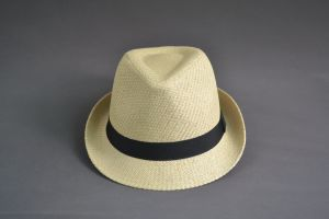 Blank Paper Straw Fedora Hat pictures & photos