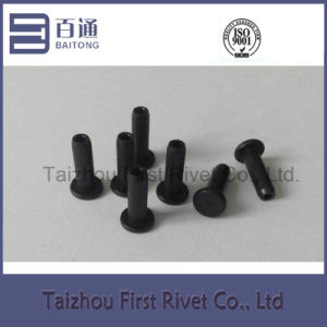 5X16mm Black Zinc Plated Flat Head Semi Tubular Steel Rivet pictures & photos