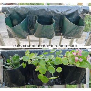 Ilot Plant Grow Nursery Bag / Plant Bag 6-Pocket Set pictures & photos