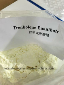 Muscle Growth Steroids Bodybuilding Enanject CAS 315-37-7 Testosterone Enanthate 100% Success to Canada