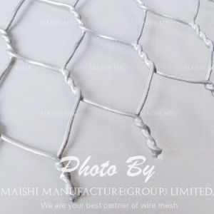 Gal. Hex Hole Wire Mesh pictures & photos