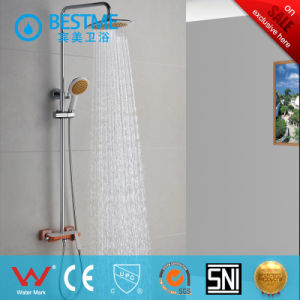 304 Stainless Steel Shower Panel (BF-W012) pictures & photos