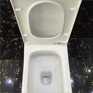 Hot Sale Washdown One-Piece Toilet to Middle East Market pictures & photos