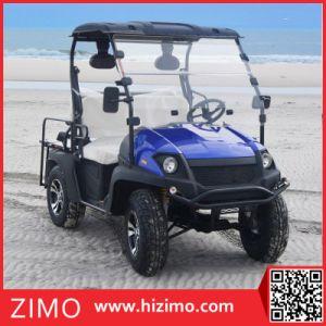 2017 4kw Electric Vehicle UTV pictures & photos