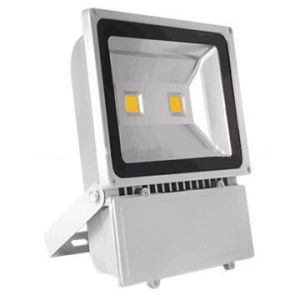 Outdoor Lighting 100W LED Flood Light/30W LED Flood Light/50W LED Flood Light pictures & photos