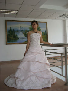 Wedding Dress pictures & photos