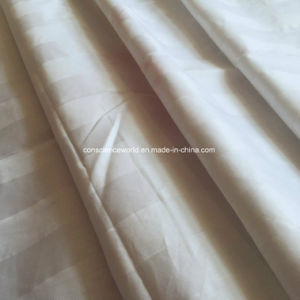 100%Mulberry Silk 100%Cotton Luxury Stripe Jacquard Silk Quilt pictures & photos