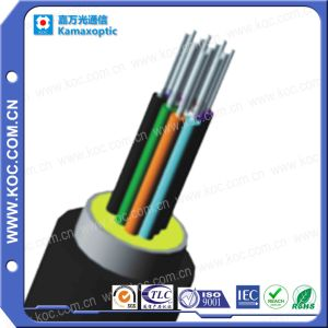 12core Fiber Optic Waterproof Pigtail Cable I Koc pictures & photos