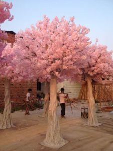 Wedding Decorative Artificial Cherry/Sakura Flower Blossom Tree pictures & photos