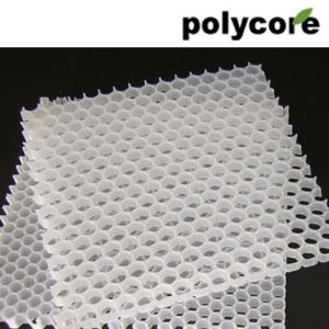 PP Honeycomb Core (PP12) pictures & photos