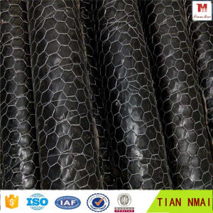 Hexagonal Wire Mesh /Livestock Wire Netting pictures & photos
