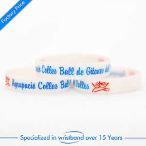 High Quality Segmented Promotional Items Wristband pictures & photos