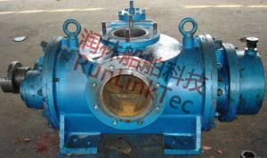 Screw Pump/Double Screw Pump/Twin Screw Pump/Fuel Oil Pump/2lb2-500-J/500m3/Marine Equipment pictures & photos