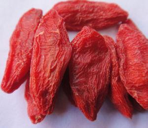 Ningxia Fresh Goji Berry (Wolfberry) --Chun Guo Goji pictures & photos