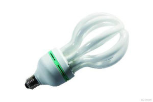 Lotus Energy Saving Lamp Bulbs with CFL pictures & photos