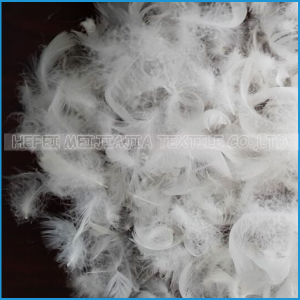 Washed White Duck Feather for Home Textile pictures & photos