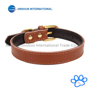 Basic Classic Padded Leather Pet Collars for Cats/Dogs pictures & photos