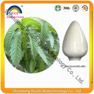 GMP Factory Supply Stachyose/Raffinose Stachyose/Stachyose Tetrahydrate Powder pictures & photos