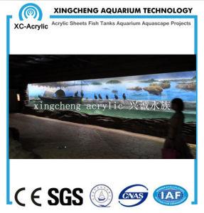 Customized Aquarium Project Acrylic Material Fish Globe pictures & photos