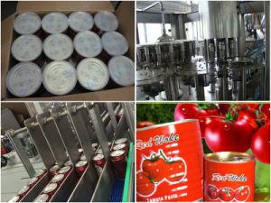 Canned Tomato Paste/Tomato Sauce/Tomato Ketchup/Tomato Puree pictures & photos