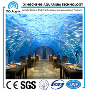 Aquarium Restaurant Project Used with Transparent Acrylic Sheet for Decoration pictures & photos