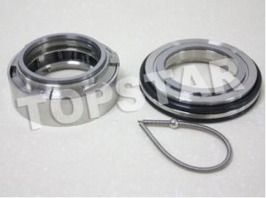 Mechanical Seals (TPL-60A)