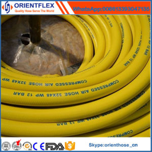 Top Quality Compressed Air Hose pictures & photos