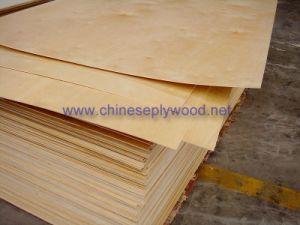 Exterior Poplar Plywood (ht-plywood-043)