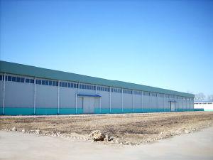 Steel Prefabricated House (NTSW-004)