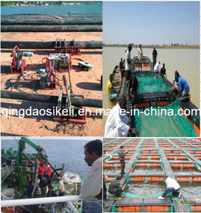 Square Fishery Machinery pictures & photos