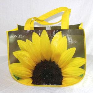 Non Woven Recycle Shopping Bag (SQ-3)