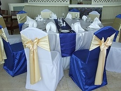 Polyester Chair Covers, Banquet Chair Covers (Selina - 008)