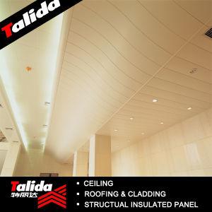 Aluminum Strip Ceiling--C200mm (TLD-91)