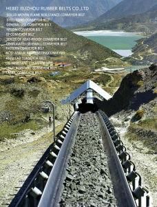 Aramid Cord Conveyor Belt pictures & photos