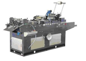 Full Automatic Carton Windowing Film Sticking Machine (PRYTMH-685\695)